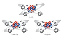 Isotope of carbon . 3 steps vector. On white background Stock Image