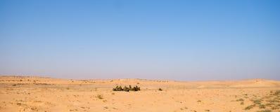 Israëlische militairenexcersice in een woestijn Stock Afbeelding
