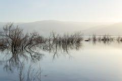 Israel. Dead sea. Dawn. Sunrise. Stock Photos