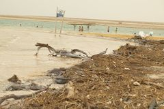 Israel, Dead Sea, June 2018: people rest in the water of the dea. D sea on the beach of Ein Gedi stock images