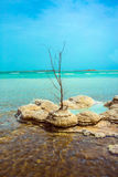 Israel, Dead Sea. Picturesque islands of medicinal salt in the lake. Israel, Dead Sea. The concept of ecological and therapeutic tourism royalty free stock images