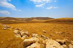 Israel Desert Royalty Free Stock Images
