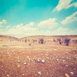 Israel Desert Royalty Free Stock Photo