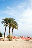 Israel desert oase Royalty Free Stock Images