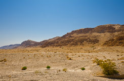 Israel Deset Royalty Free Stock Images