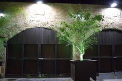 Israel, Dimona, 2018 - cerca, árvores, parede de pedra na noite imagem de stock royalty free