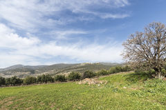 Israel galilee Nimrod Fortress Foto de archivo
