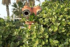 Israel, Haifa, fire hydrant. Fire hydrant in the bushes on mount Carmel near the monastery of Stella Maris Stock Photos