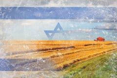 Israel jordbruk som skördar skördar Arkivfoto