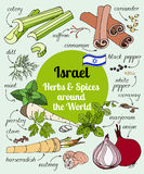Israel-Kräuter und -gewürze Stockfoto