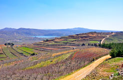 Israel Landscape. Agriculture fields and Birkat Ram lake in the Golan Heights, Israel Royalty Free Stock Image