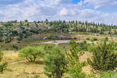 Israel Landscape Photo stock