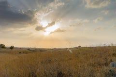 Israel Landscape Arkivbild
