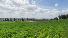Israel landscape timelapse, clouds moving over green field. And traffic in the background stock footage