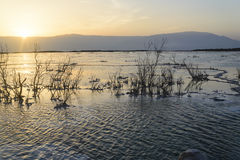 Israel Mar muerto amanecer Salida del sol Imagenes de archivo