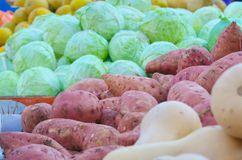 Israel market produce: colorful fresh bell peppers Royalty Free Stock Image