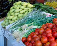 Israel market produce: green onion, tomatoes, zukini, and eggpla Stock Photography