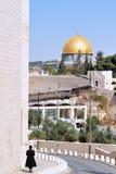israel moskéer Royaltyfria Foton
