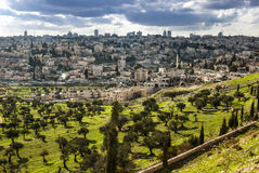 Israel, mount olives. View of Mt. Olives, in the old city of Jerusalem, Israel Royalty Free Stock Photos