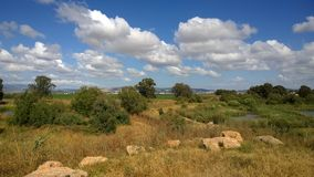 Israel Nature Image stock