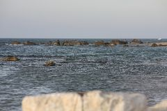 Israel, Netanya, rocks on the shore of the Mediterranean Sea Royalty Free Stock Image