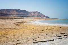 israel nieżywy morze Obrazy Royalty Free
