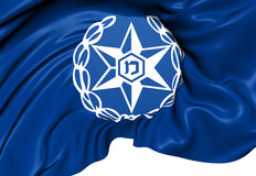 Israel Police Flag Royalty Free Stock Image