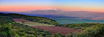 Israel Sunset Landscape. The Hermon mountain and agriculture fields at sunset in the Golan Heights, Israel Royalty Free Stock Image