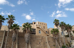 Israel. Townscape Jaffa with the palm trees Royalty Free Stock Image