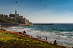 Israele, mar Mediterraneo, vecchia Giaffa, St Peter Immagine Stock Libera da Diritti