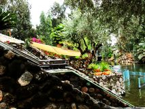 Israele, Medio Oriente, il fiume Giordania, Golan Heights Fotografia Stock