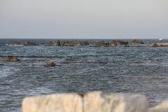 Israele, Netanya, rocce sulla riva del mar Mediterraneo Immagine Stock Libera da Diritti
