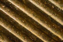 Israeli 10 Agorot-Münze unter dem Mikroskop Stockfotos