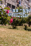 Israeli flags in garden in Jerusalem Royalty Free Stock Photos
