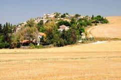 Israeli landscape. Stock Images