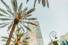Israeli office high urban building in Tel-Aviv. Rothschild boulevard. Travel city and business center Stock Images