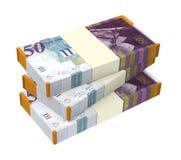 Israeli Shekel money isolated on white background. Stock Photography