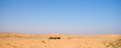 Israeli soldiers excersice in a desert Stock Image