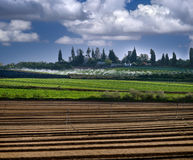 Israeli village of Sde Varburg Stock Photos