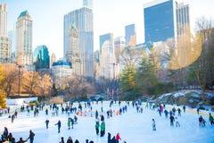 Isskateboradåkare som har gyckel i den New York Central Park i vinter royaltyfri fotografi