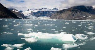 Isstora bitar som ställa i skuggan av Alaska Kenia för bergAialik glaciär fjordar Fotografering för Bildbyråer