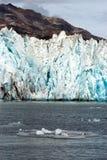 Isstora bitar som ställa i skuggan av Alaska Kenia för bergAialik glaciär fjordar Arkivfoto