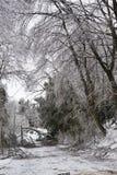 Isstorm - skada arkivbilder