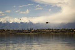 Issyk-Kul sjö i Kirgizistan, centrala Asien Royaltyfria Bilder
