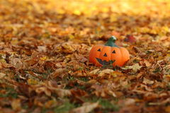 IST DA de Der Herbst Image libre de droits