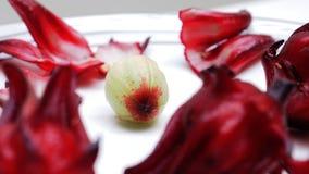 Ist der Makrofotofokus frischen roselle Samens, der in der Mitte ausgewählt ist, nettes SH Lizenzfreie Stockfotografie