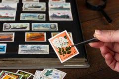 Ist ein Buch heraus auf Briefmarkensammeln alt und neu lizenzfreies stockfoto