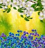 Ist ein grünes Feld voll der Weizenanlagen Blühende Birne Stockbild