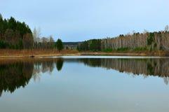 Ist ein grünes Feld voll der Weizenanlagen Frühling reflektiert im Fluss Lizenzfreie Stockbilder