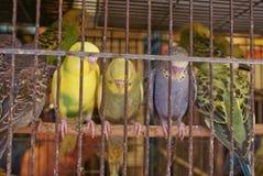Istambul Grand Bazar view Stock Photo